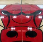 bulls floor